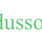 Edusson Review