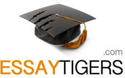 Essay Tigers Review